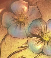 Len zwyczajny kwiaty rysunek blog