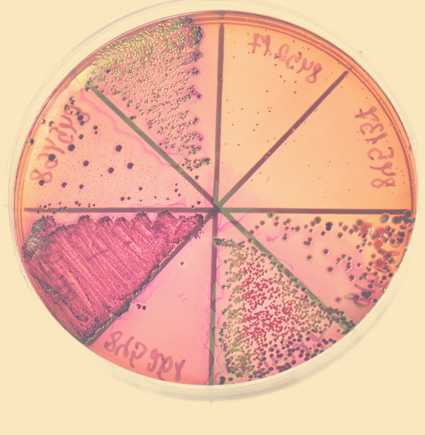 Tradzik leczenie sposoby laboratorium blog