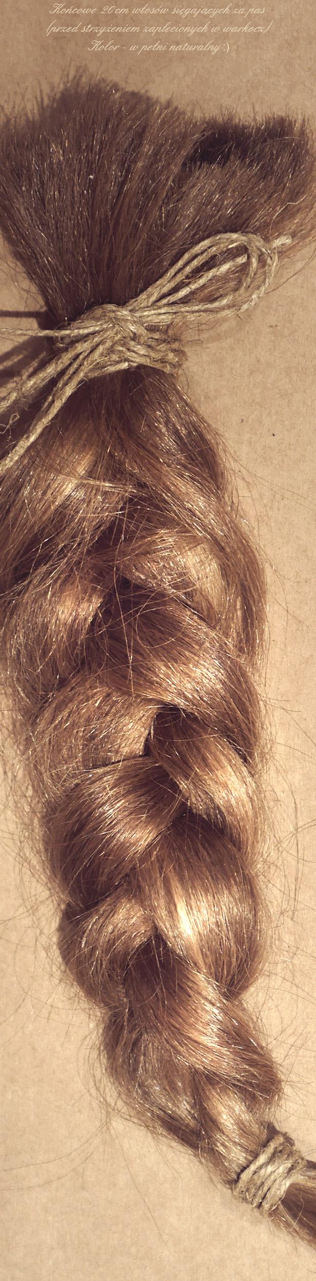 Kolory wlosow warkocz blond naturalny jasny blog