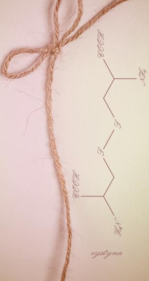 Jak odbudowac zniszczone wlosy proteiny blog